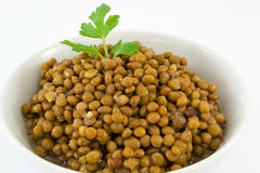 Lentils Stock Photography