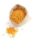 lentils Fotografia de Stock Royalty Free