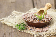 Free Lentils Royalty Free Stock Images - 54355029