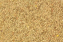 Lentils background Royalty Free Stock Photography