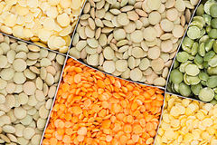 Lentils background, assortment - red, yellow, green in square cells closeup top view. Stock Image
