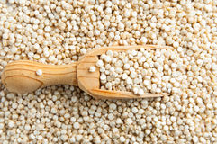 Lentils crop and spoon Royalty Free Stock Photos