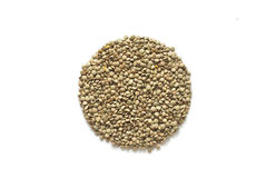 Lentils. Crude lentils circle design on white background Royalty Free Stock Photos