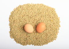 Lentils with eggs Royalty Free Stock Photo