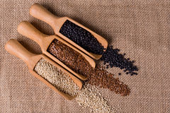 Lentils, flax and quinoa seeds in wooden spoon. Royalty Free Stock Image
