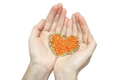 Lentils in hands Royalty Free Stock Photos