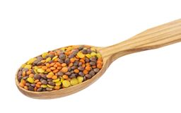 Lentils mix in wooden spoon isolated on white background. Mixed red, yellow and brown lentils. Stock Photography