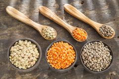 Three types of lentils - Lens culinaris Stock Photography