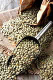 Lentils from organic agriculture production Royalty Free Stock Image