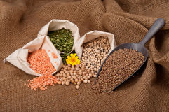 Lentils, Peas and Beans Stock Image