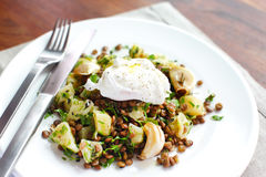 Lentils with potatoes, herbs and a poached egg Stock Photo