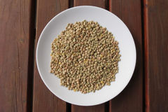 Lentils pulse grain legume vegetables Royalty Free Stock Photos