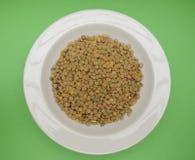 Lentils pulse grain legume vegetables Stock Photography
