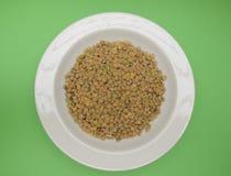 Lentils pulse grain legume vegetables Stock Images