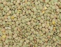 Lentils pulse grain legume vegetables Stock Image