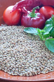 Lentils ready to be cooked with tomatoes , peppers , eggplant Stock Image