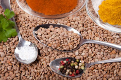 Lentils, salt, pepper and curry spice on heap of brown lentils Stock Image