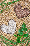 Lentils, soybeans, beans with herbs - pulse royalty free stock photo