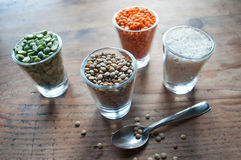 Lentils and split peas Royalty Free Stock Photos