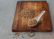 Lentils on spoon Royalty Free Stock Photography