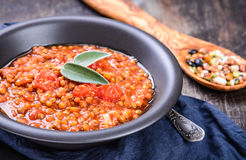 Lentils stew in bowl. Royalty Free Stock Photos