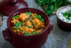 Lentils and Sweet Potato Porridge royalty free stock photos