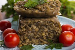 Lentils terrine with herbs Royalty Free Stock Photography