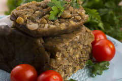 Lentils terrine with herbs Royalty Free Stock Images