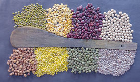 Lentils used in Indian cooking Stock Image