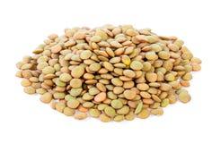 Lentils on white background Stock Images
