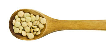 Lentils in a wooden spoon Royalty Free Stock Photo