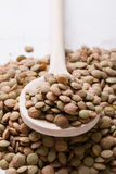 Lentils with wooden spoon Royalty Free Stock Image
