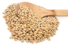 Lentils with wooden spoon Stock Image