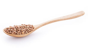 Lentils in wooden spoon on white background. Lentils in wooden spoon isolated on white background Royalty Free Stock Images