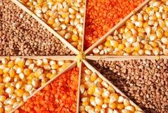 Lentles,buckwheat,corn Royalty Free Stock Photography