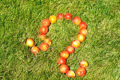Leo. July 23-August 22,zodiac sign,made of plums on grass,see series Stock Images