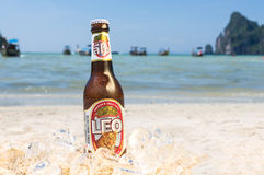 Leo beer on the beach Royalty Free Stock Image