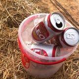 Leo Beer stockfoto