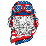 Leo biker helmet . The driver or pilot . Vector illustration for prints , cards or posters . Stock Photos
