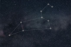 Leo Constellation. Zodiac Sign Leo constellation lines vector illustration