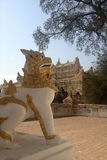 Leo guard in myanmar Stock Photo