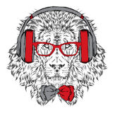 Leo headphones and sunglasses . Vector illustration. Royalty Free Stock Photo