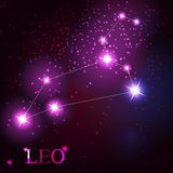 Leo zodiac sign of the beautiful bright stars Royalty Free Stock Photography