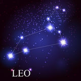 Leo zodiac sign of the beautiful bright stars. Vector of the leo zodiac sign of the beautiful bright stars on the background of cosmic sky Stock Image
