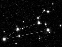 Leo Zodiac Royalty Free Stock Image