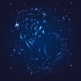 Leo zodiac whith glitter star Royalty Free Stock Photography