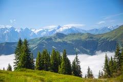 Leogang austriaco di Salisburgo delle alpi Alpi austriache di bello paesaggio della nebbia di mattina del cielo blu di estate Immagine Stock