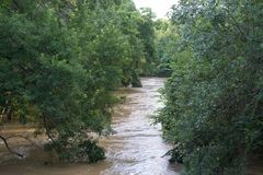 Leon River flood stage. The Leon River at flood stage heavy spring rain Stock Photography