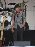 Leonard Cohen (Luca 2013) Royalty-vrije Stock Afbeeldingen