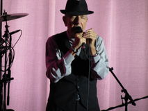 Leonard Cohen (Luca 2013) Royalty-vrije Stock Foto's